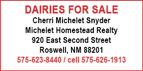 Michelet Homestead Realty
