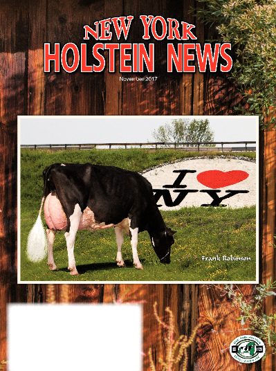 The November issue of the New York Holstein News is now online