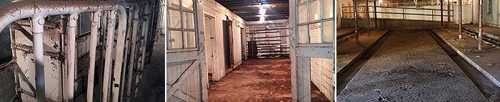 Dairy Barn Now 3 shots